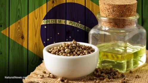 Brazil-Flag-Hemp-Seeds-Oil