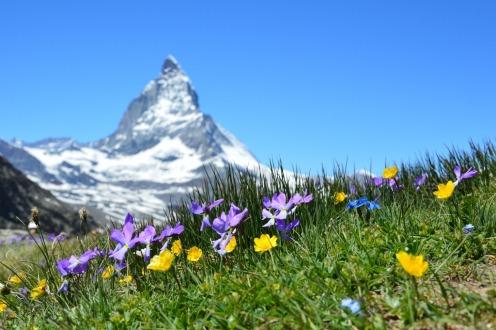 The first report of 5G injury from Switzerland Matterhorn-1516734_1920